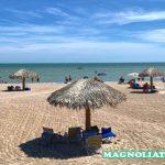 Paduan Wisata Pantai Terbaik Di Texas Menurut Lone Star