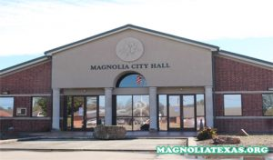 Pasar Magnolia di Silos